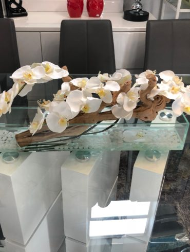 White Orchids on Water